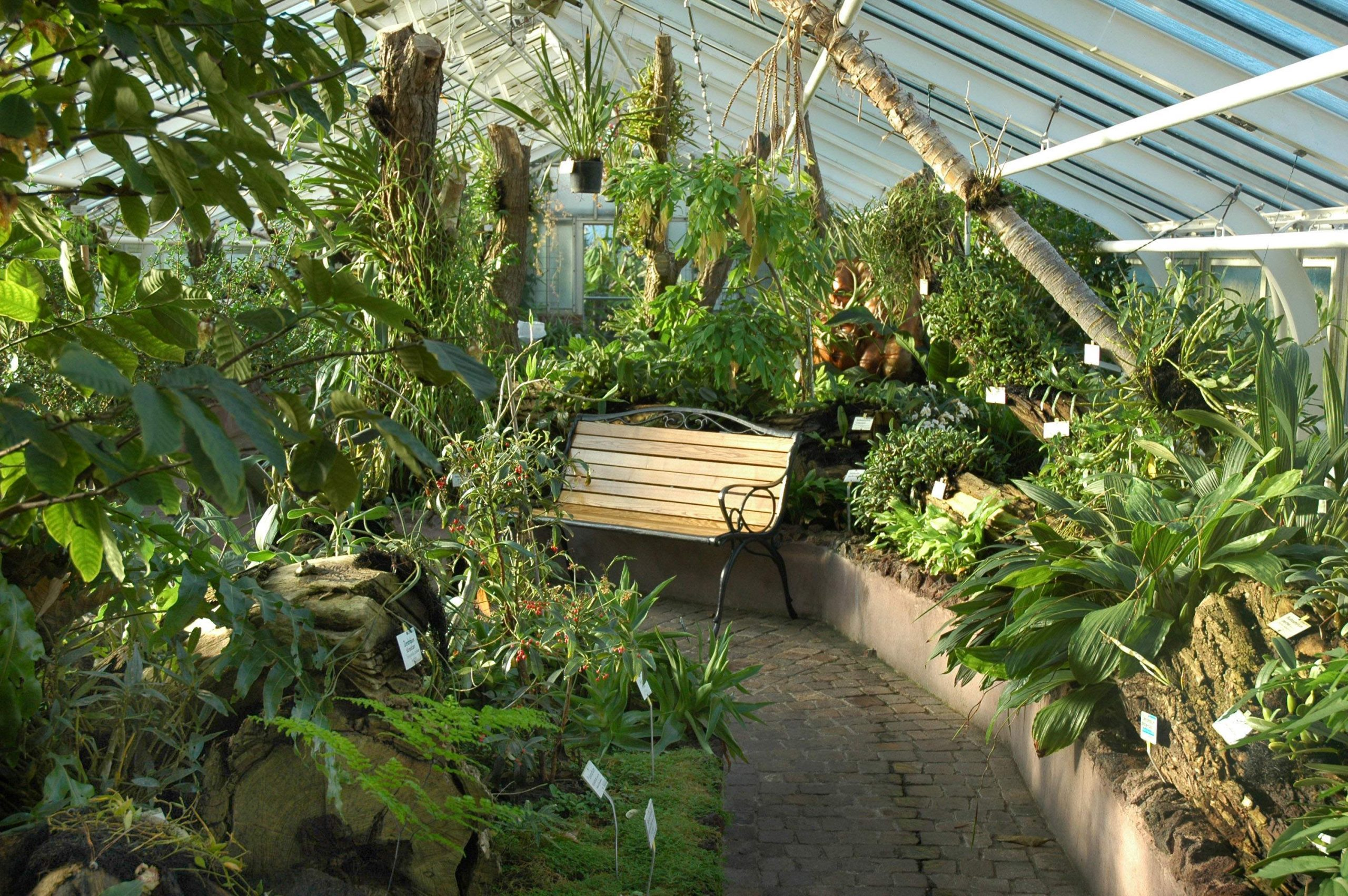 Orchideengewaechshaus