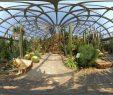 Botanischer Garten Berlin Luxus Feinripp Art Interior Design