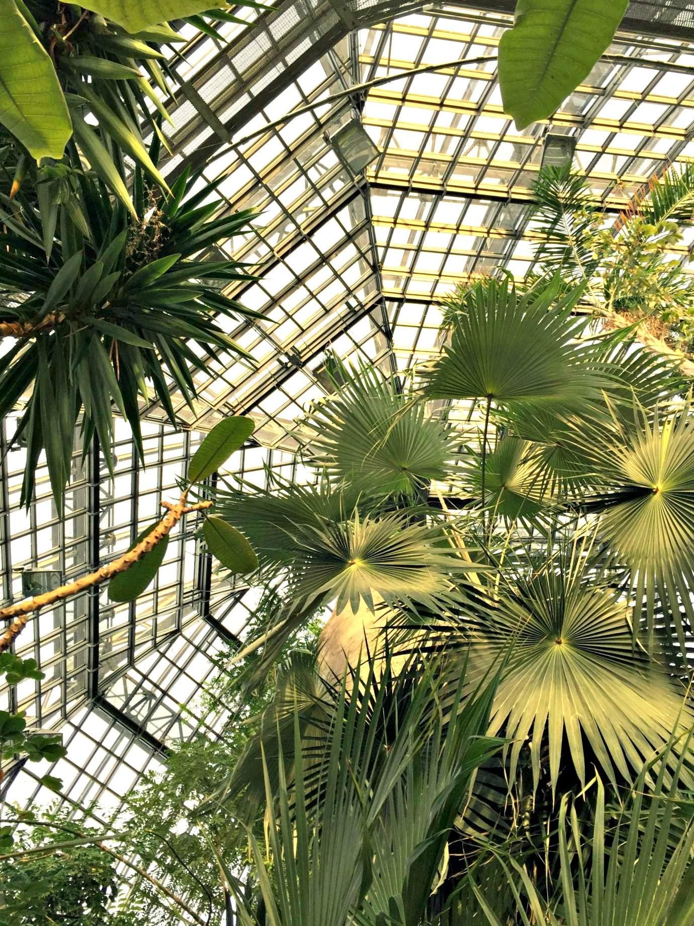 Botanischer Garten Berlin Reizend Botanischer Garten Berlin Dahlem
