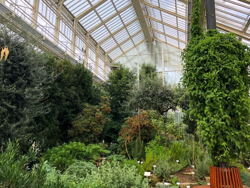 Botanischer Garten Bonn Das Beste Von Botanische Gärten Mit Gewächshäusern In Deutschland Eine
