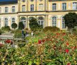 Botanischer Garten Bonn Elegant Poppelsdorfer Schloss Botanischer Garten Bonn Deutschland