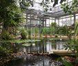 Botanischer Garten Bonn Neu Botanische Gärten Mit Gewächshäusern In Deutschland Eine
