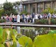 Botanischer Garten Bonn Reizend Ein Segen Für Den Kräuterstrauß Wegegottes Nst Zu Mariä