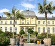 Botanischer Garten Bonn Reizend Kaninchen Im Bonner Schlossgarten Geht Es Jetzt An Den