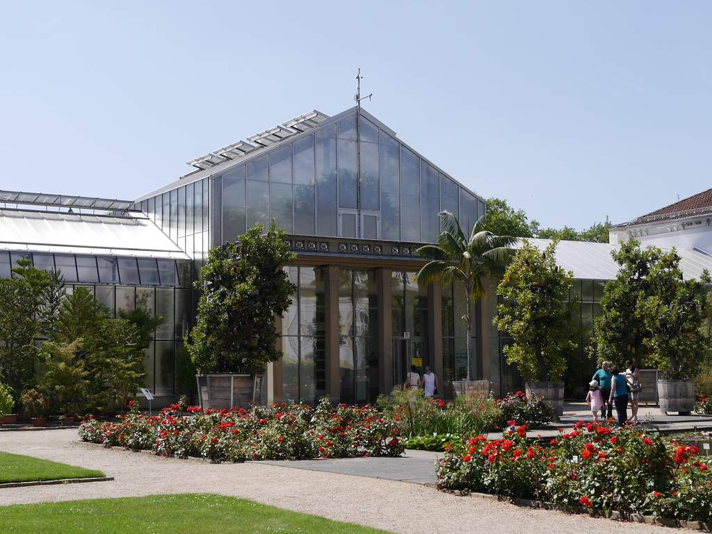 Botanischer Garten Bonn Schön Botanischer Garten Der Universität Bonn