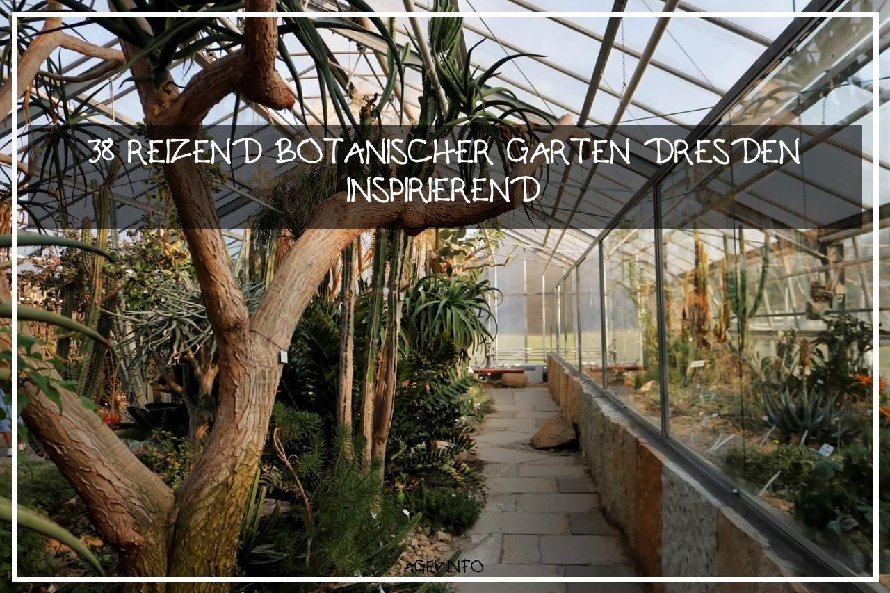 Botanischer Garten Dresden Frisch Botanischer Garten Dresden – 5 Dinge Du Noch Nicht