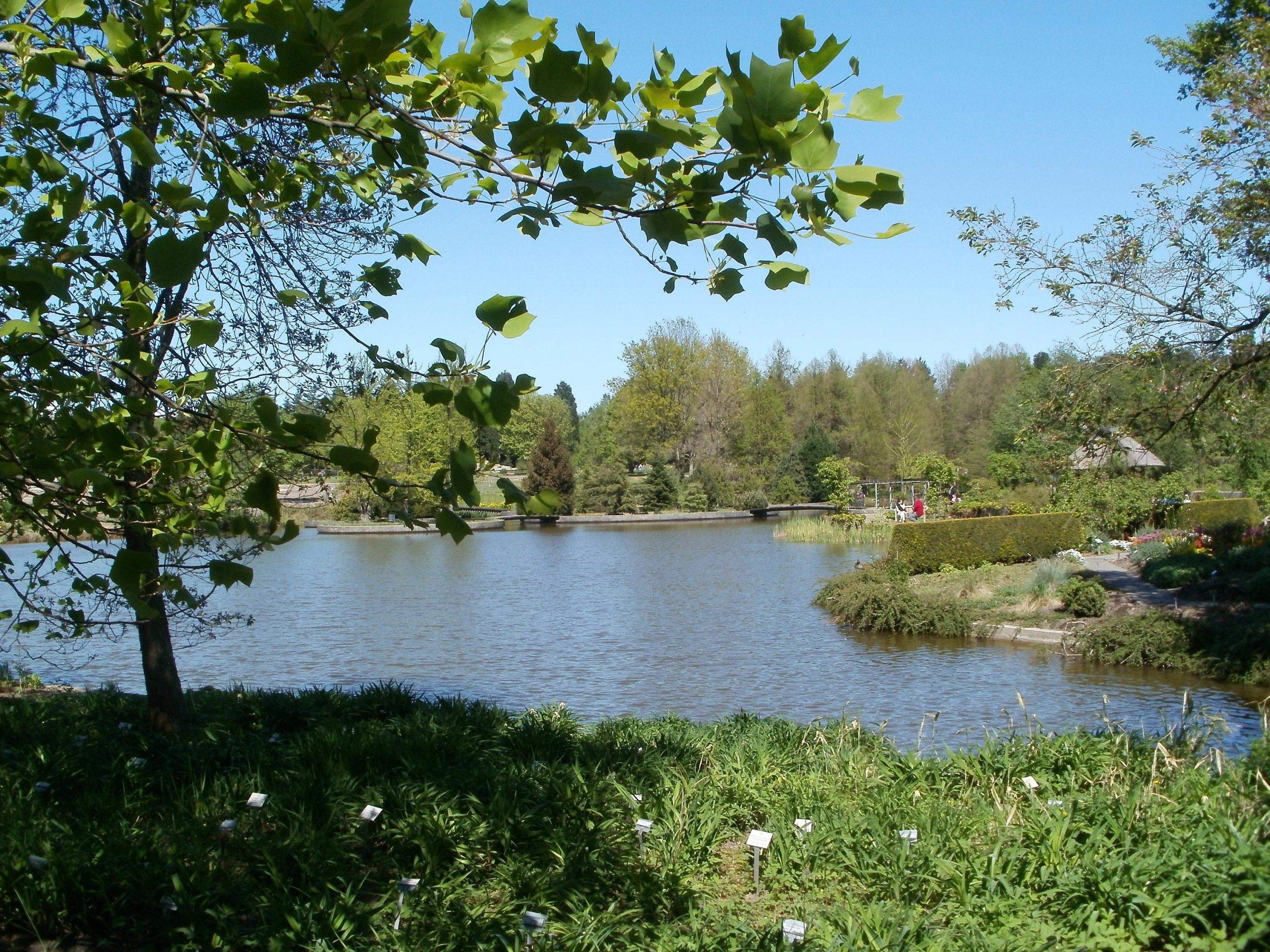 Botanischer Garten JPG