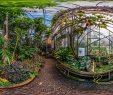 Botanischer Garten Hamburg Inspirierend Botanischer Garten Darmstadt Tropenhaus Botanischer Garten