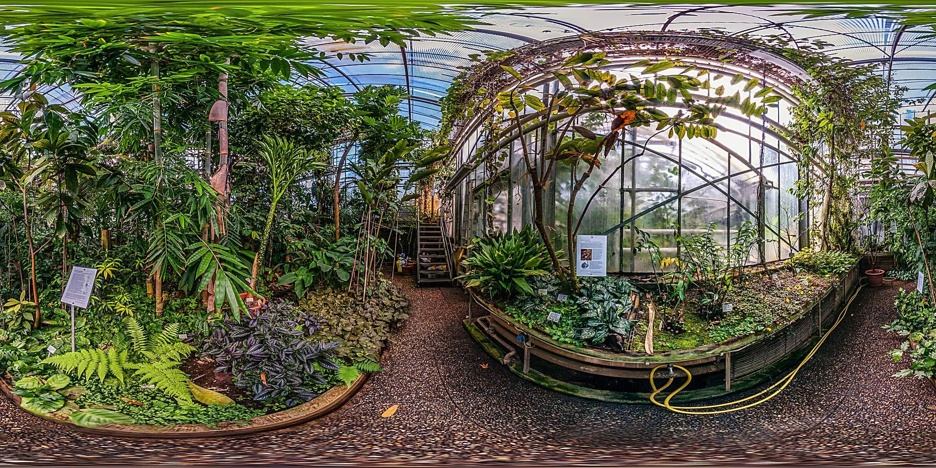 Botanischer Garten Darmstadt Tropenhaus