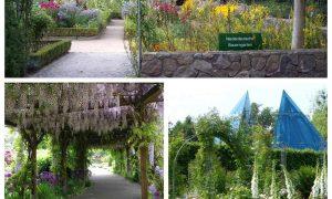 40 Genial Botanischer Garten Hamburg Elegant