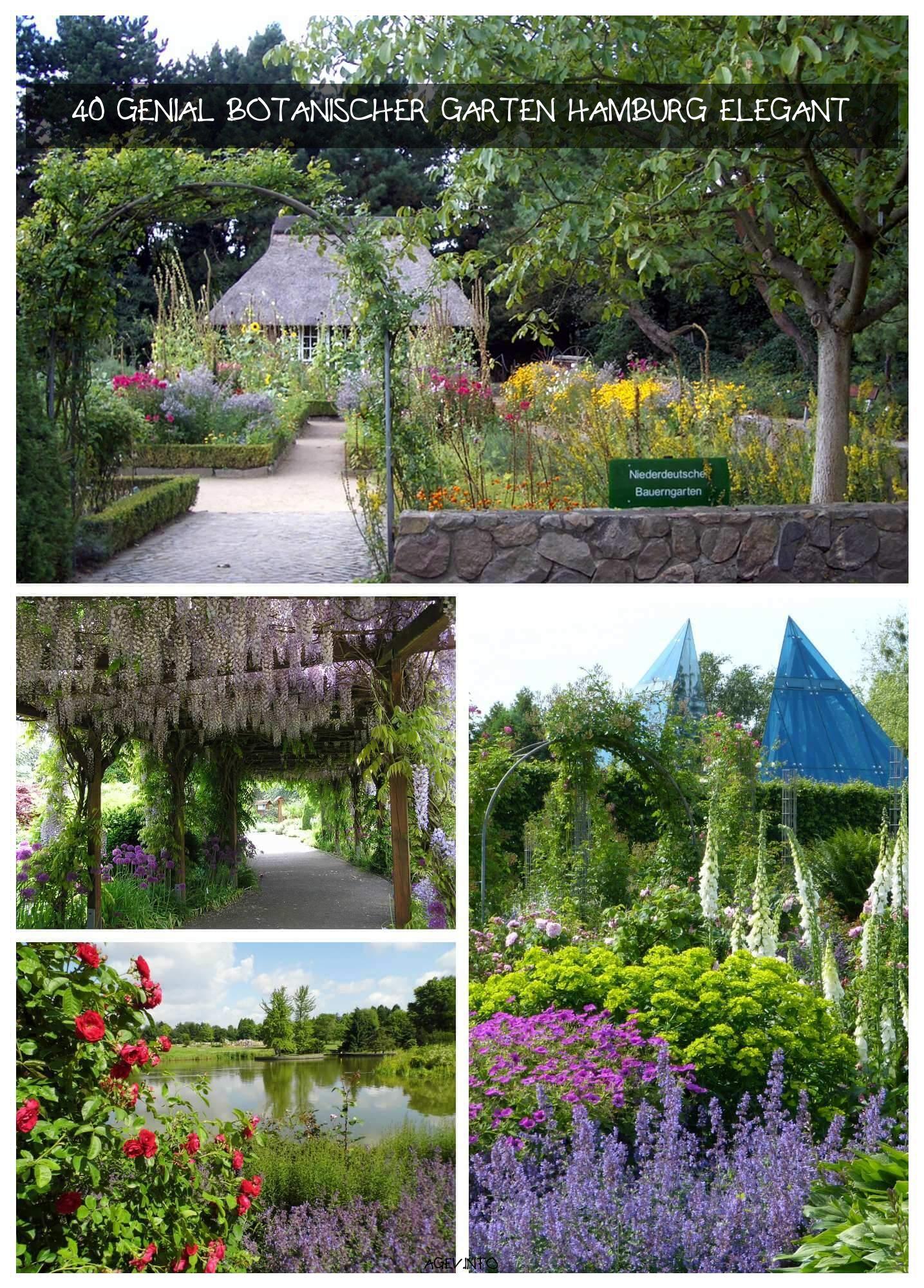 Botanischer Garten Hamburg Neu Ein Kleinod In Hamburgs Westen ist Definitiv Der Loki