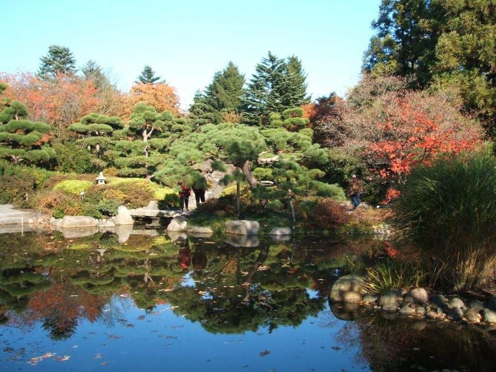 """Botanischer Garten Hamburg Reizend Bild """"japanischer Garten"""" Zu Botanischer Garten Klein"""