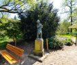 Botanischer Garten Marburg Das Beste Von Botanische Gärten Marburg Marburg In Hessen
