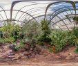 Botanischer Garten Marburg Das Beste Von Botanischer Garten Marburg Kanarenhaus Botanischer Garten