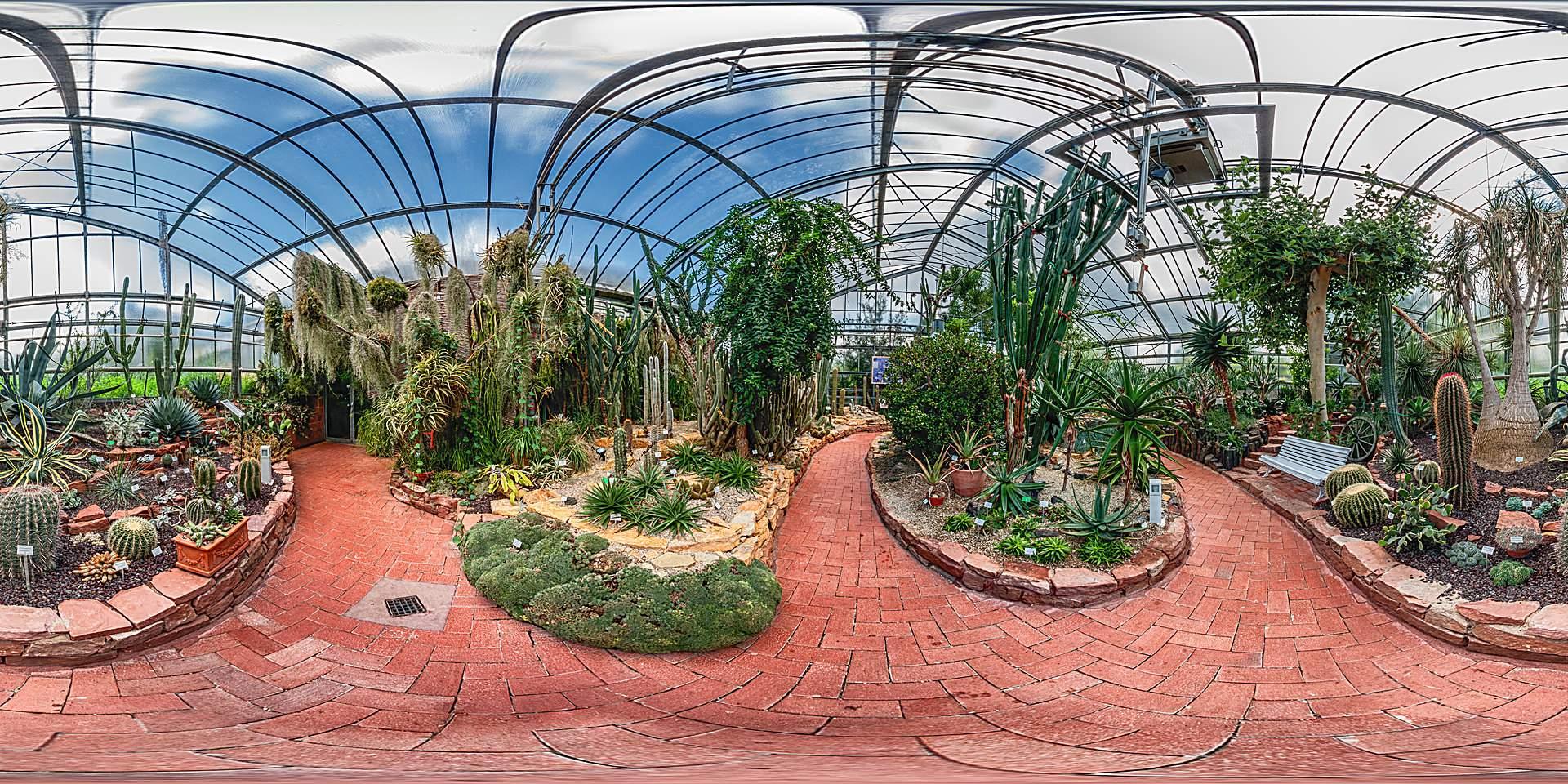 Botanischer Garten Marburg Sukkulentenhaus