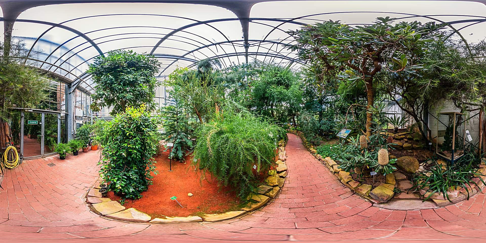 Botanischer Garten Marburg Australienhaus