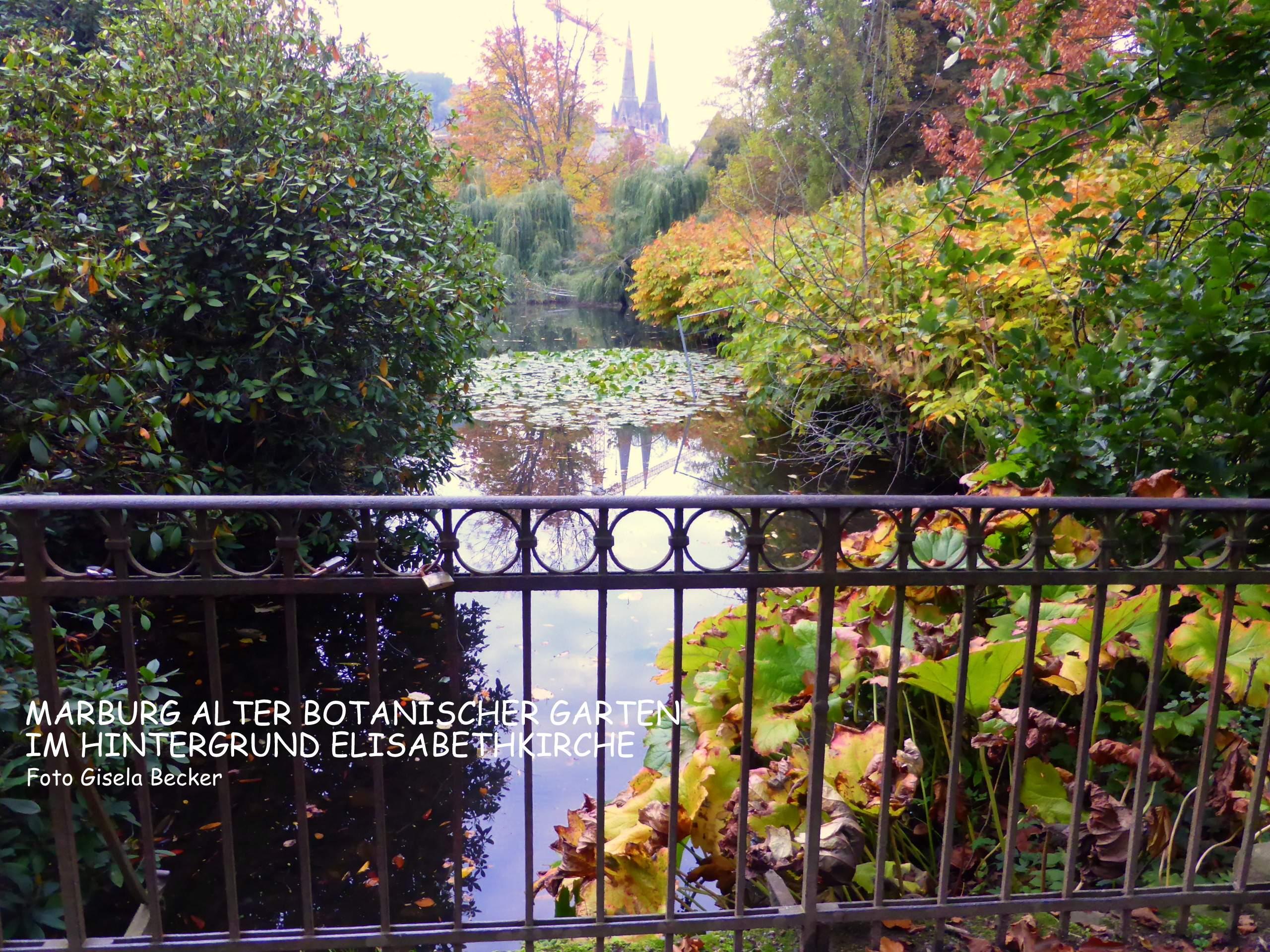 Botanischer Garten Marburg Elegant Ein Schöner Tag – Marburg Von Seiner Besten Seite
