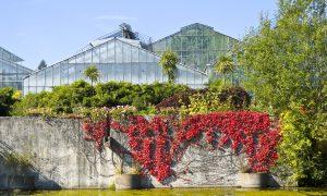 37 Schön Botanischer Garten Marburg Genial