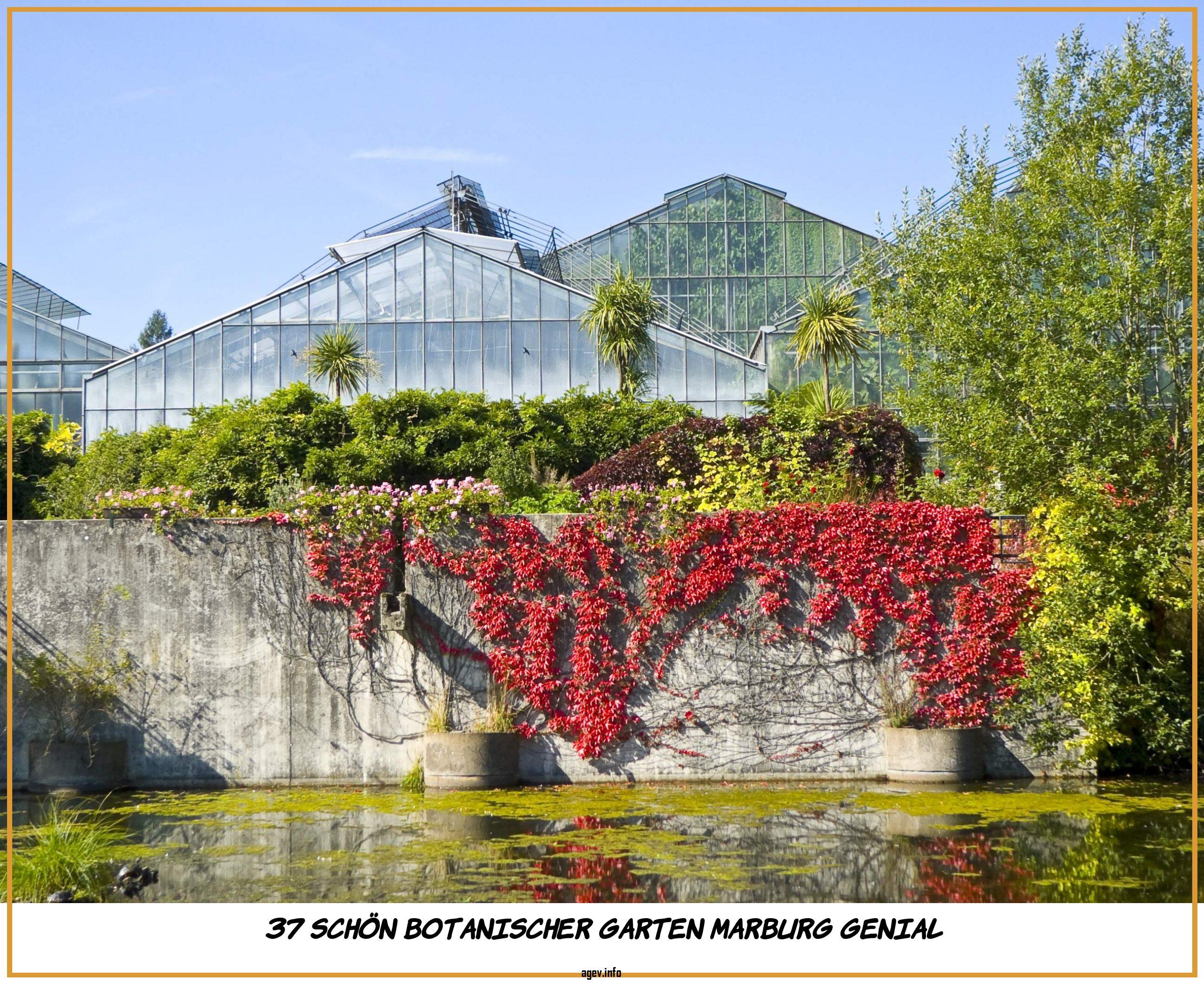 Botanischer Garten Marburg Frisch Datei Neuer Botanischer Garten Marburg 002 –