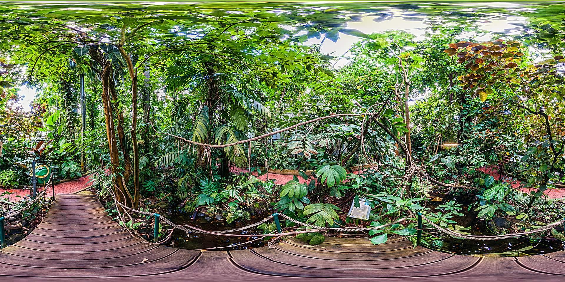 Botanischer Garten Marburg 1
