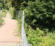 Botanischer Garten Marburg Genial Naturschutzbund Hat forderungen Zur Neugestaltung Vom Alten
