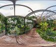 Botanischer Garten Marburg Inspirierend Botanischer Garten Marburg Wasserpflanzenhaus
