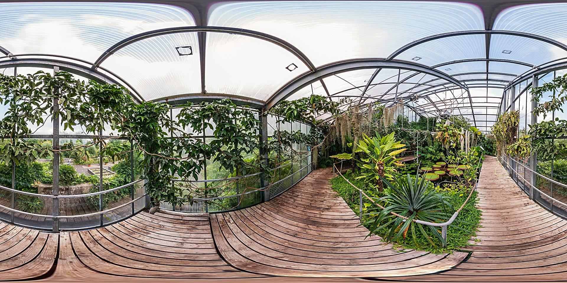 Botanischer Garten Marburg Wasserpflanzenhaus
