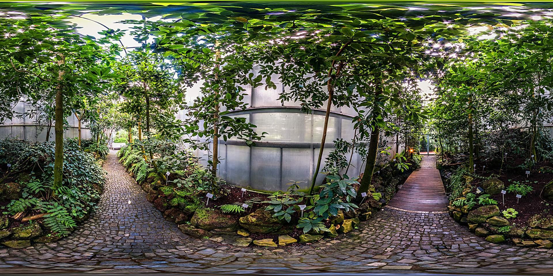 Botanischer Garten Marburg Reizend Botanischer Garten Marburg Lorbeerwald Botanischer Garten