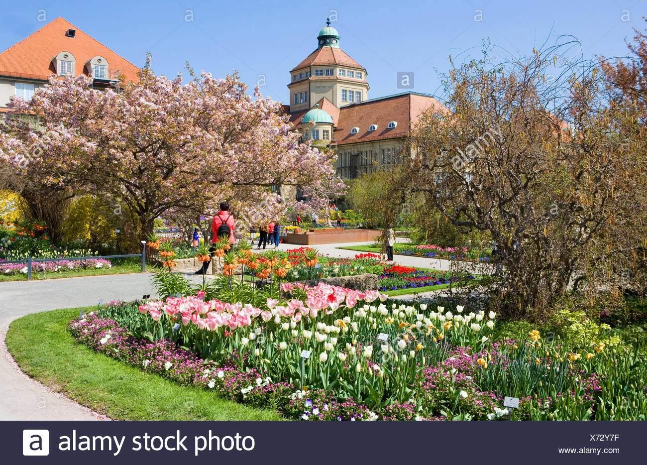 Botanischer Garten München Frisch Botanischer Garten München Nymphenburg Botanischer Garten