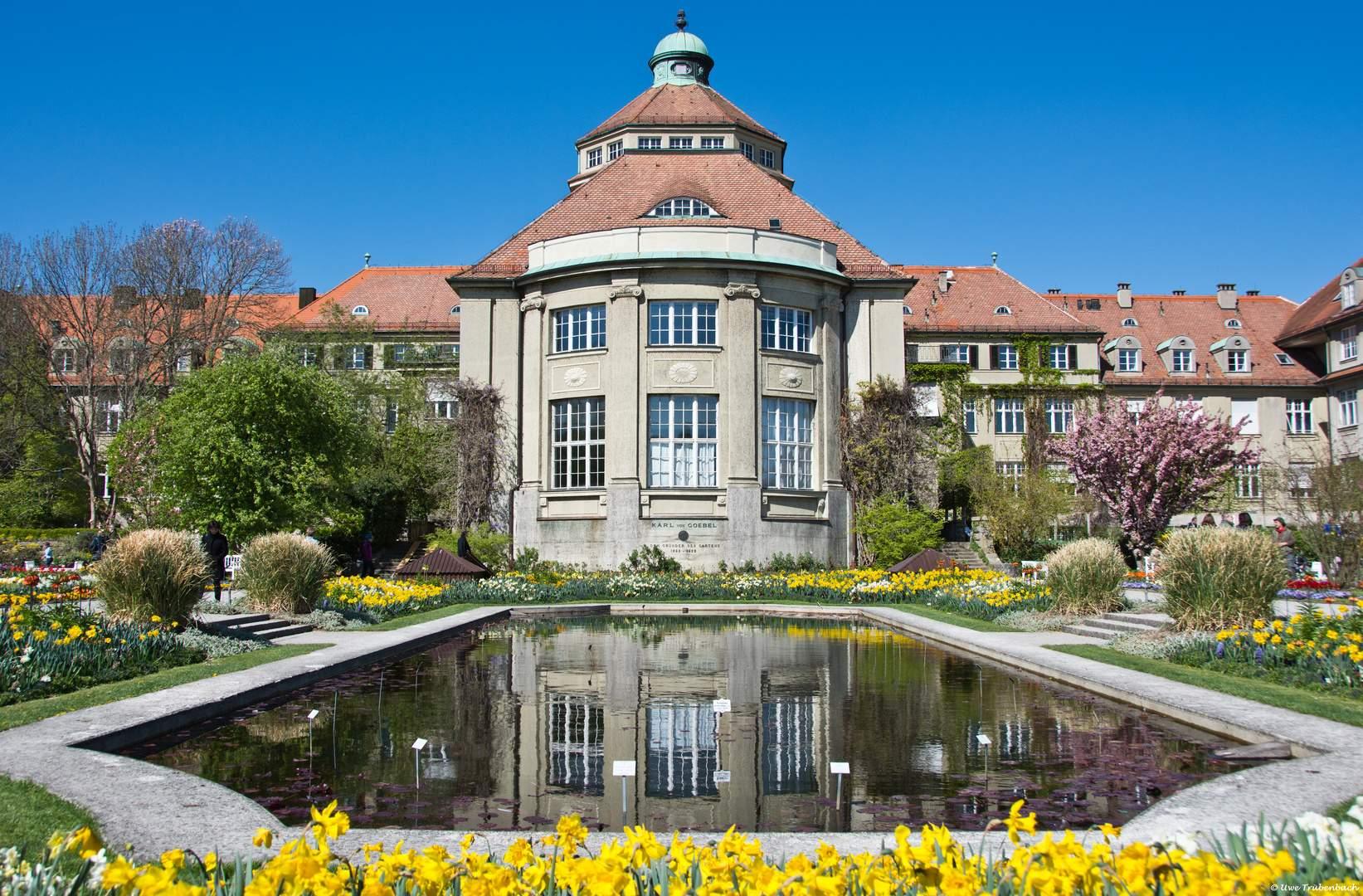 Botanischer Garten München Frisch Der Botanische Garten In München Nymphenburg 2 Foto