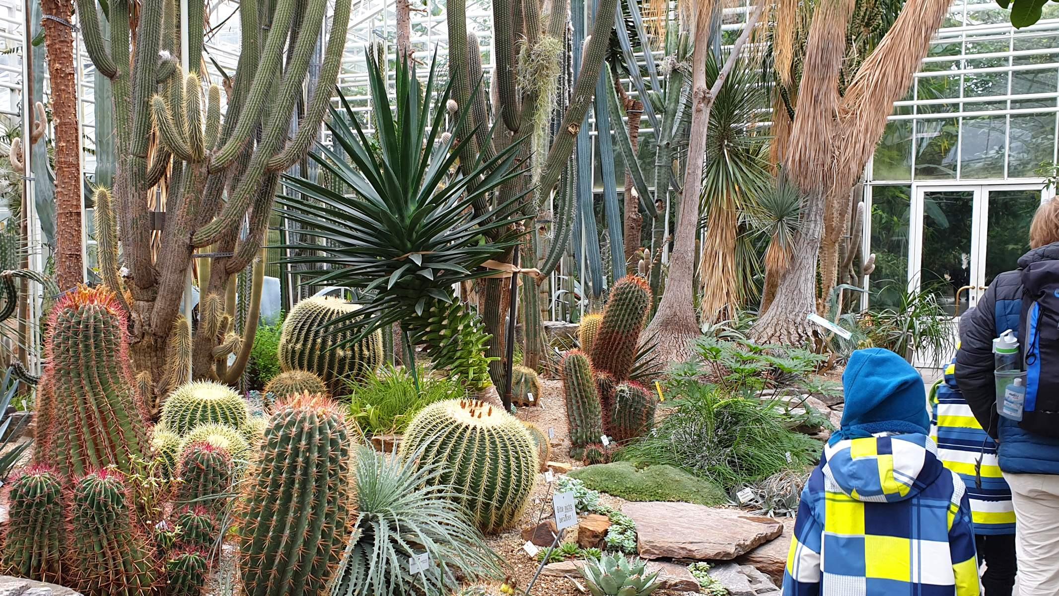 Botanischer Garten München Frisch Familien Ausflug In Den Botanischen Garten München