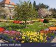 Botanischer Garten München Genial Botanischer Garten München Nymphenburg Botanischer Garten