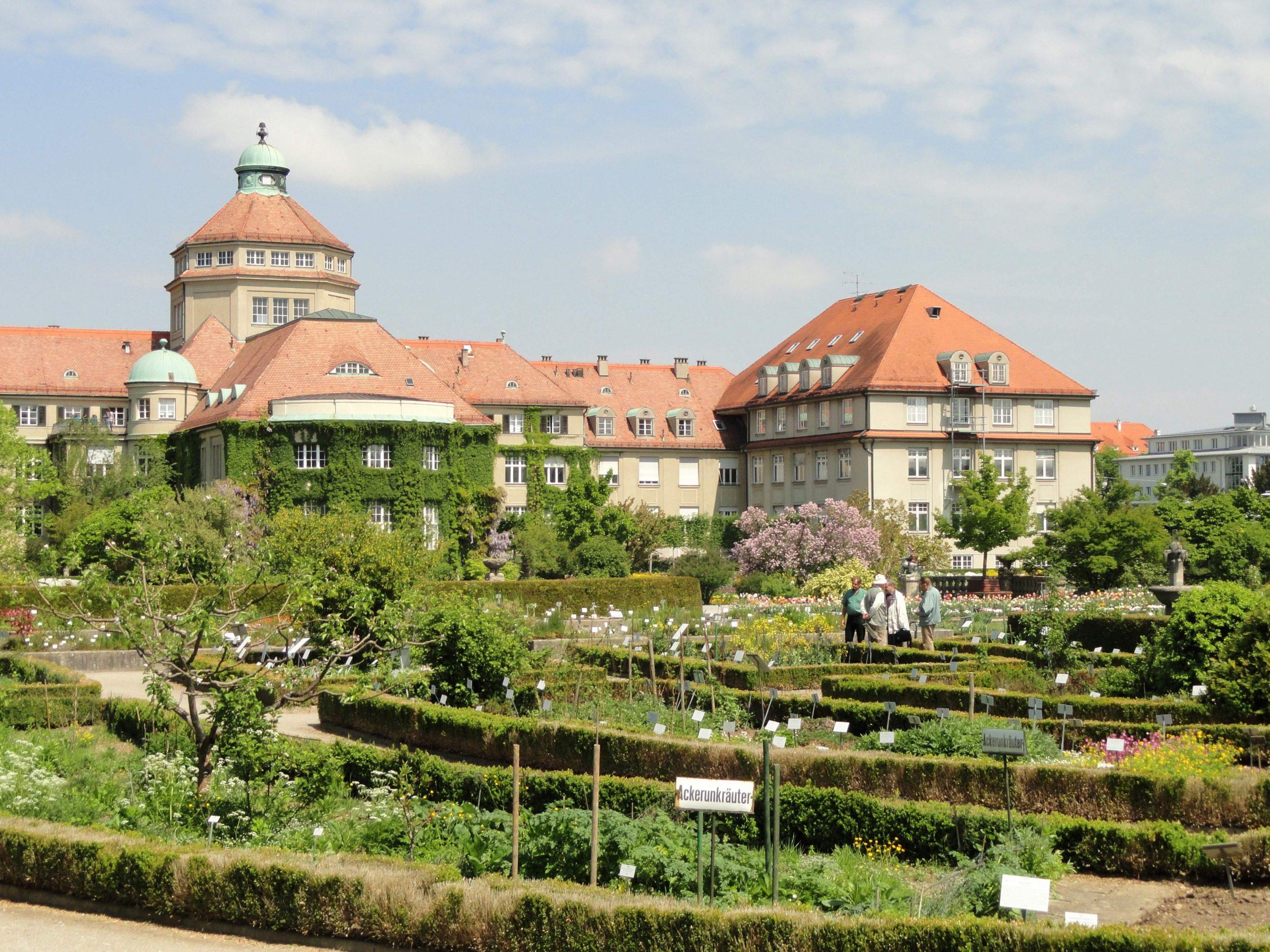 Datei Botanischer Garten München Nymphenburg DSC JPG