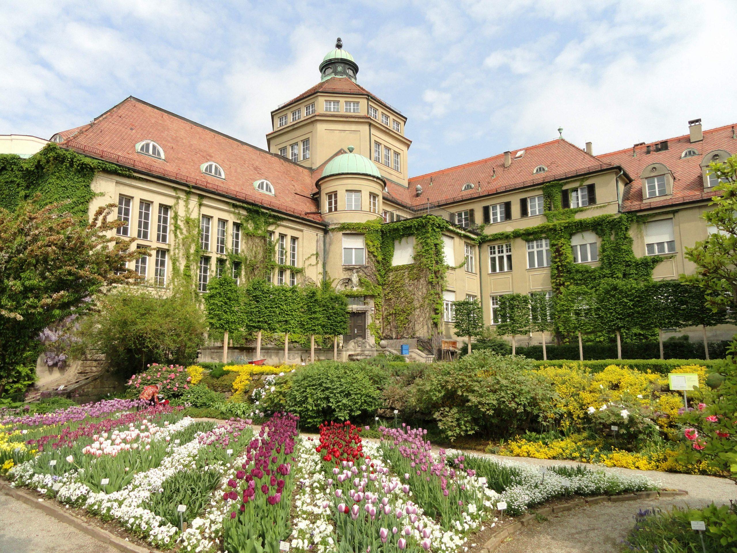 Botanischer Garten München Genial Datei Flowers In the Botanischer Garten München Nymphenburg