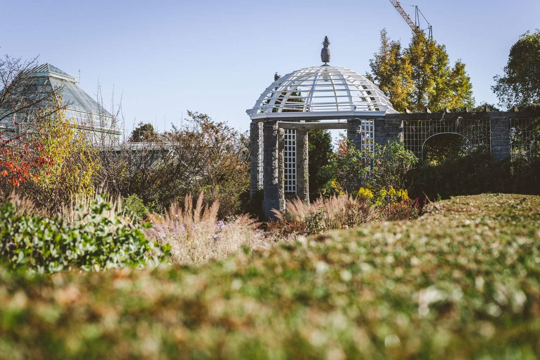 Botanischer Garten München Luxus sonntagsausflug Ab In Den Botanischen Garten München