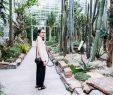 Botanischer Garten München Luxus Urban Jungle – Der Botanische Garten In München