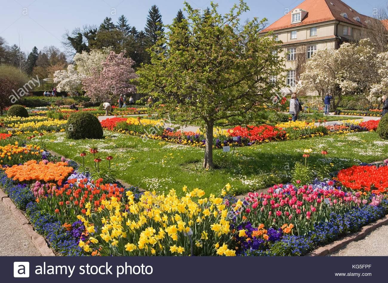 Botanischer Garten München Neu Botanischer Garten München Nymphenburg Botanischer Garten