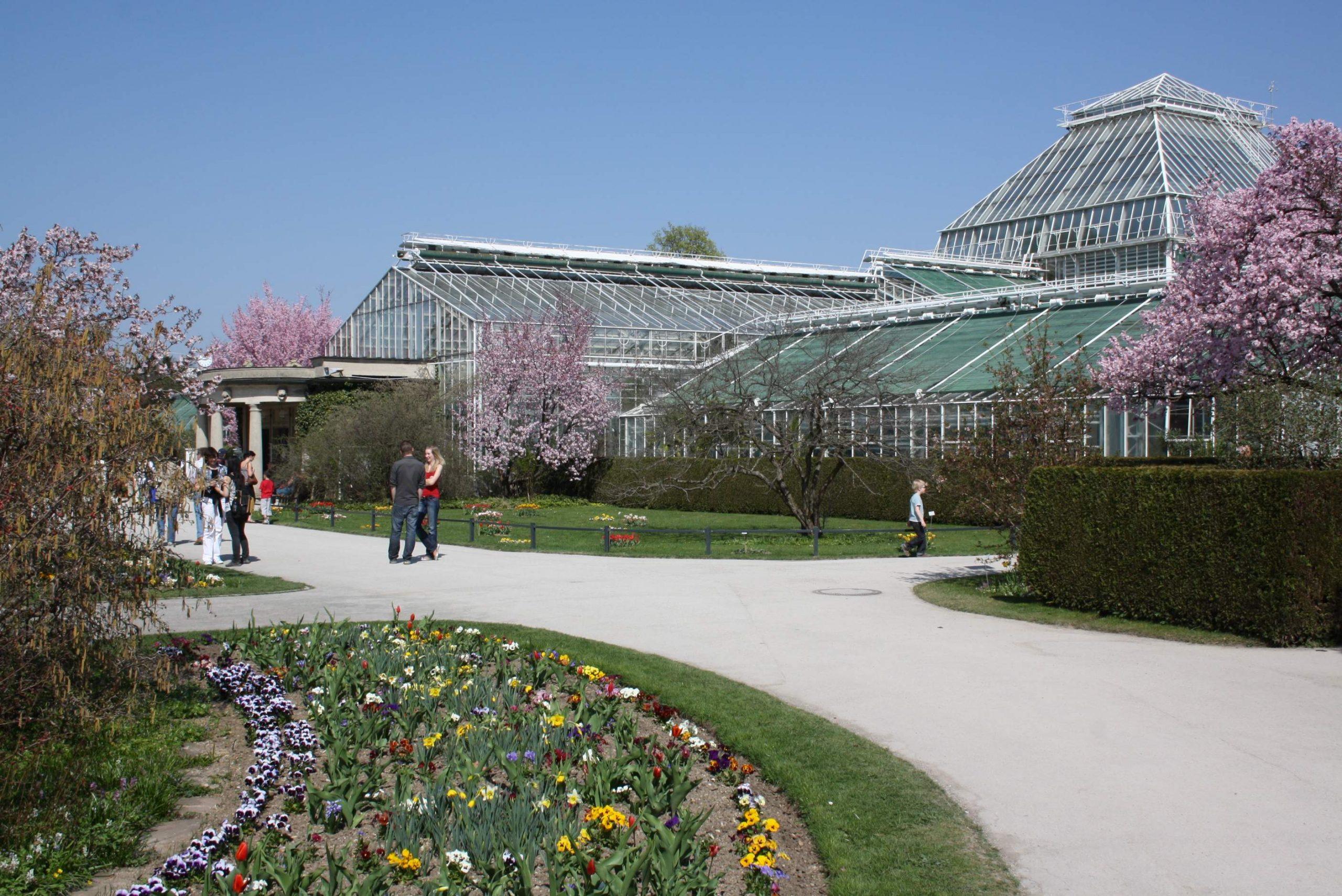Datei Botanischer Garten Muenchen Gewächshäuser JPG