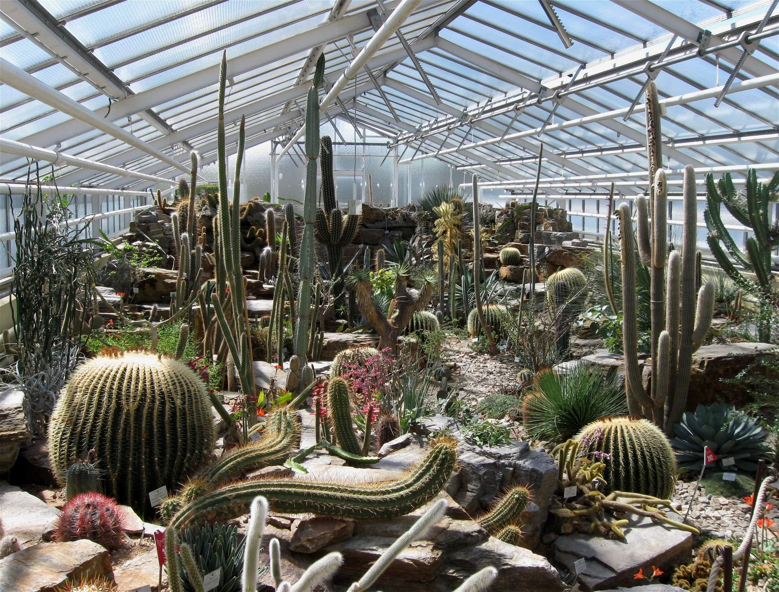 File Botanischer Garten Muenchen Mexiko Haus 1