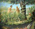 Garten Eden Inspirierend Erbsünde Adam Und Eva Im Garten Eden Späten C19th
