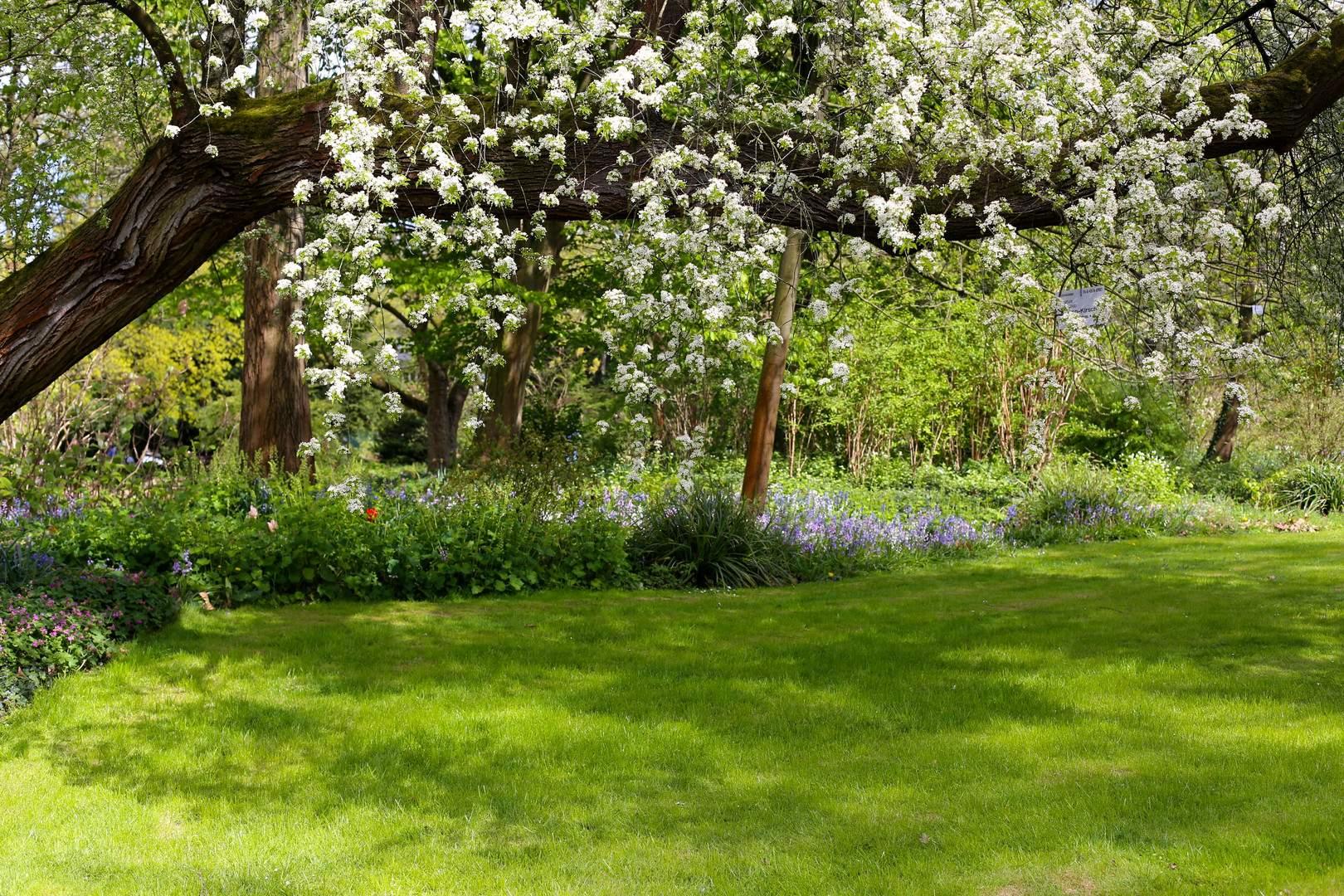 Garten Eden Inspirierend Garten Eden Foto & Bild