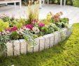 Garten Gestalten Das Beste Von Blumenbeet Gestalten – Tipps Zur Farbkomposition