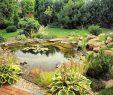 Garten Gestalten Elegant Garten Planen