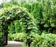 Garten Gestalten Genial Gemüsegarten Gestalten 9 Ideen Für Einen Hübschen Garten