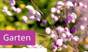 36 Reizend Garten Gestalten Mit Wenig Geld Inspirierend