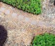 Garten Gestalten Mit Wenig Geld Reizend Viel Garten Für Wenig Geld – Die 10 Besten Tipps