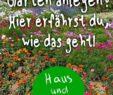 Garten Gestalten Mit Wenig Geld Schön Garten Anlegen Haus Und Beet Gemüsegartenanlegen Garten