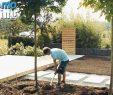 Garten Gestalten Reizend Der Moderne Garten Ein Holzdeck Bauen Und Pflegeleichte Beete Mit Bewässerungsanlage Anlegen