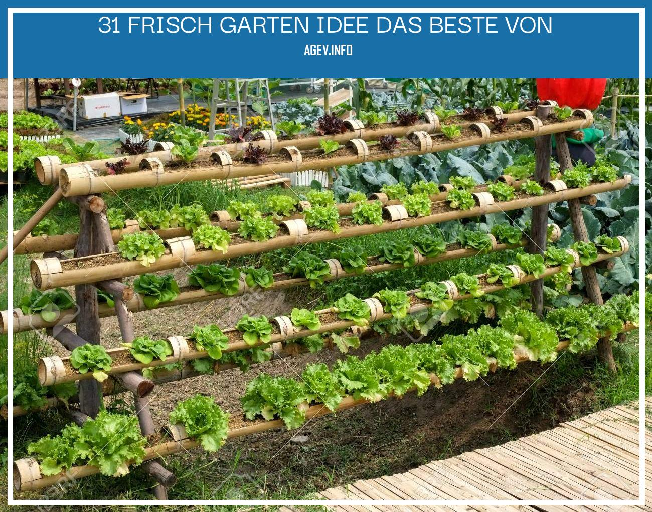 Garten Idee Luxus Stock