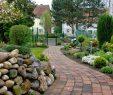 Garten König Reizend Garten Und Landschaftsbau König